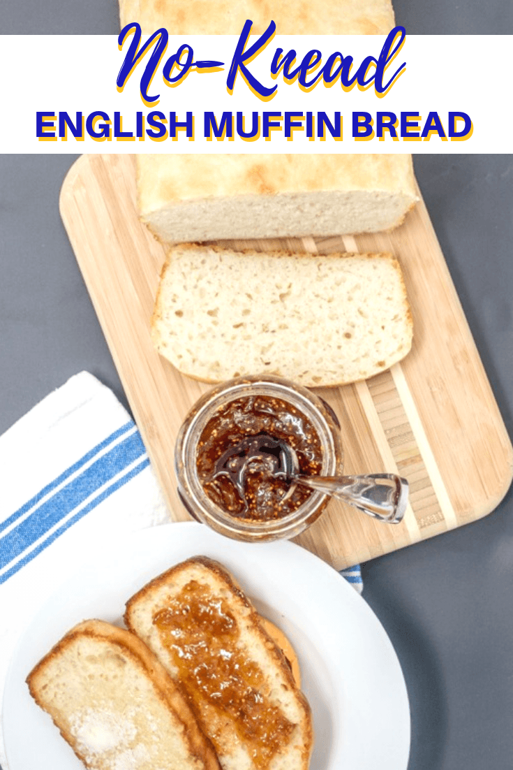 This English muffin bread is a fast no knead bread